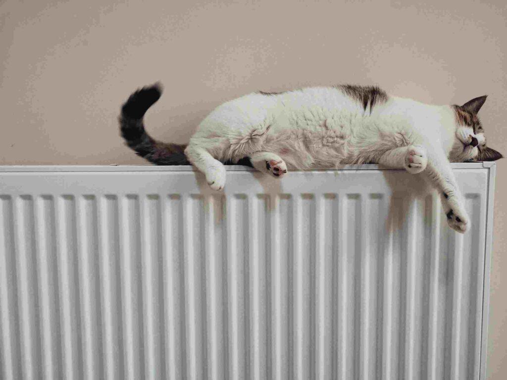 Plumber Almondsbury radiator fixings
